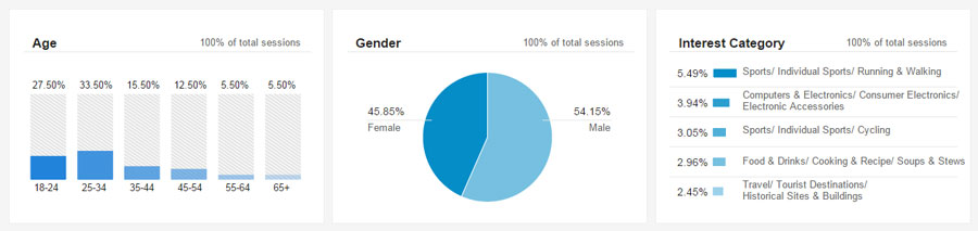 Google Analytic Results