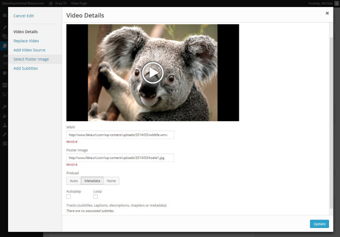WordPress Video Editor and Settings