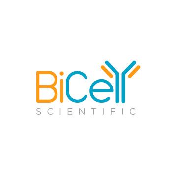 bicell-best-logo-design-st-louis04